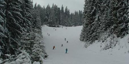 Pârtie de schi Băișoara
