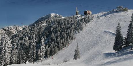 Pârtie de schi Bran
