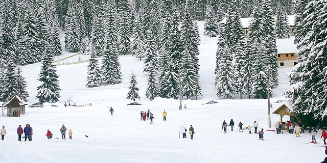 Pârtie de schi Stâna de Vale