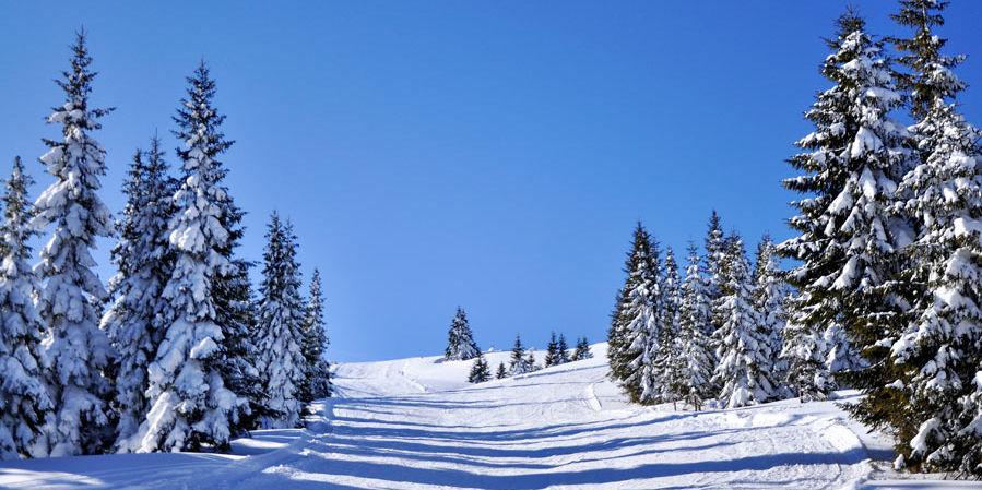 Șureanu-hegység sípálya